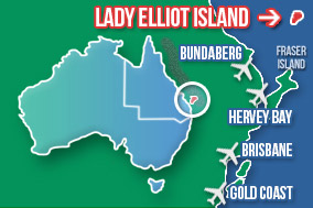 Getting to Lady Elliot Island